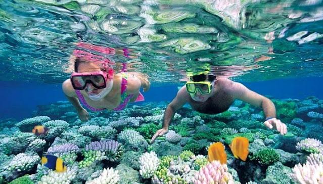 snorkling-pantai-sadranan