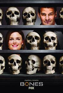 Bones Temporada 4 Online