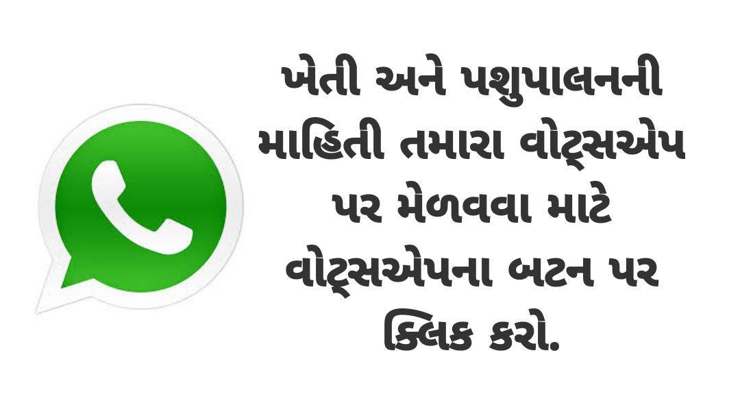 Khedut Help Whatsapp