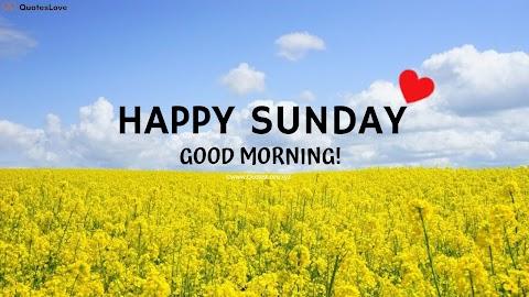 53+ [Best] Sunday Good Morning Quotes To Celebrate Sunday Morning With Happiness & Joy