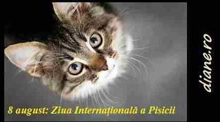 8 august: Ziua Internațională a Pisicii