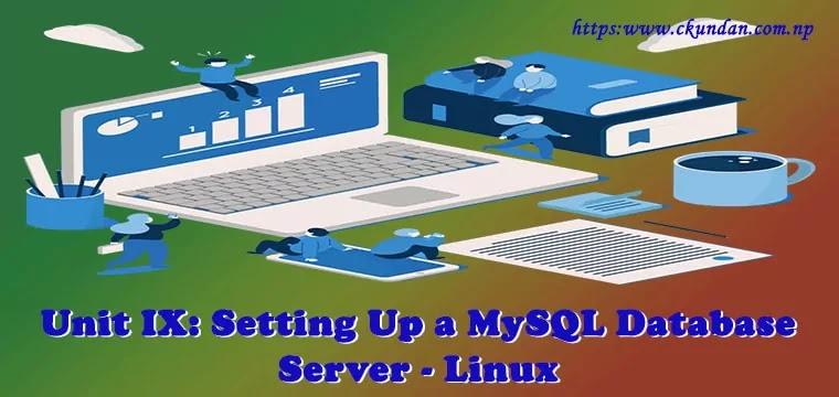 Setting Up a MySQL Database Server - Linux