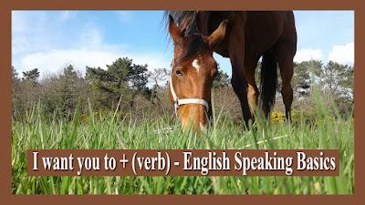 I want you to + (verb) - English Speaking Basics
