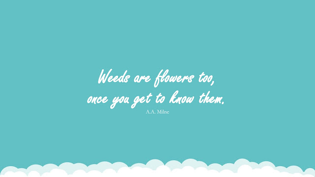 """""""Weeds are flowers too, once you get to know them."""" (A.A. Milne)"""