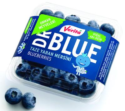 Blueberry Taze Yaban Mersini Meyvesi Nedir?, Nasıl Yenir ve Faydaları Nelerdir?