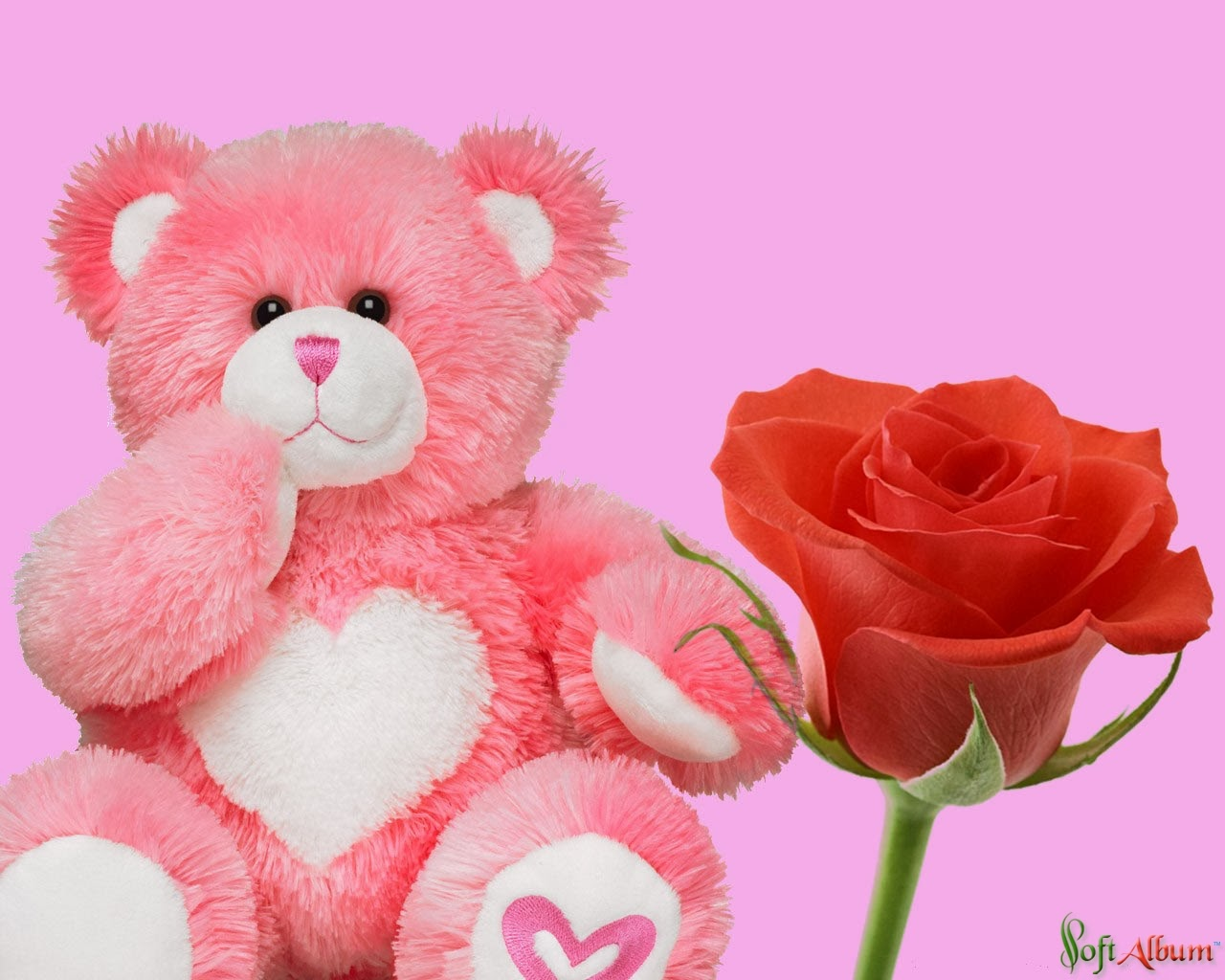 Pink Teddy Bear With Red Roses