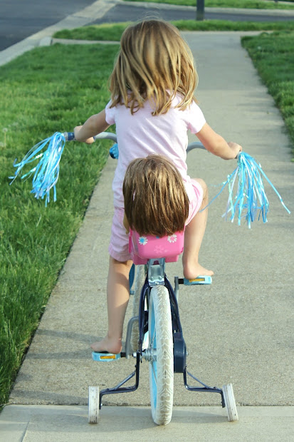 Ride Doll Bike Seat