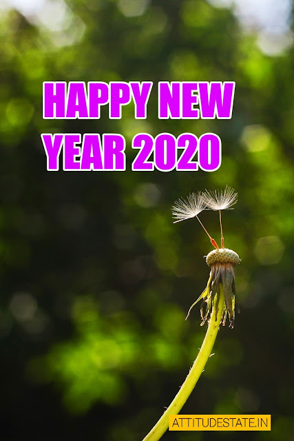 Best 200 Happy New Year 2020 Images Pictures Wishes Hd Free Download Best Shayari Status Quotes In Hindi 2021