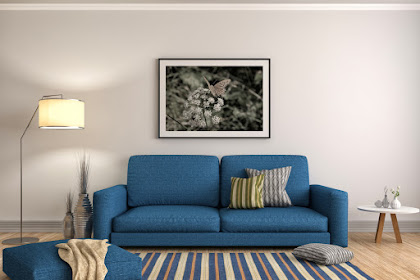Simak Jenis-jenis nya Berikut Sebelum Membeli Sofa Di Rumah