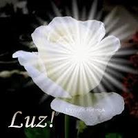 Amor e Luz!