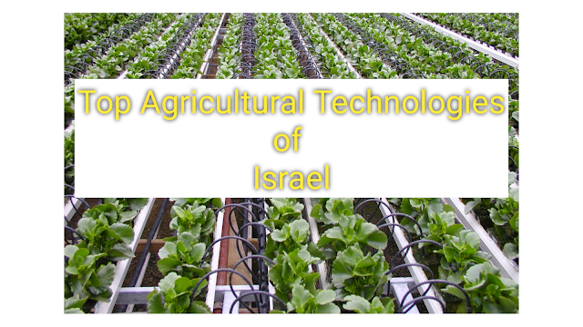 agriculture,israel,israel agriculture technology companies,israel agriculture techology,agriculture in india,information about agriculture in israel,israeli technology for agriculture practices,israel technology,israel agriculture,digital agriculture,digital agriculture for the world's poorest farmers?,agricultural,technology,mordren agriculture techniques,new agriculture techniques,agricultural technology