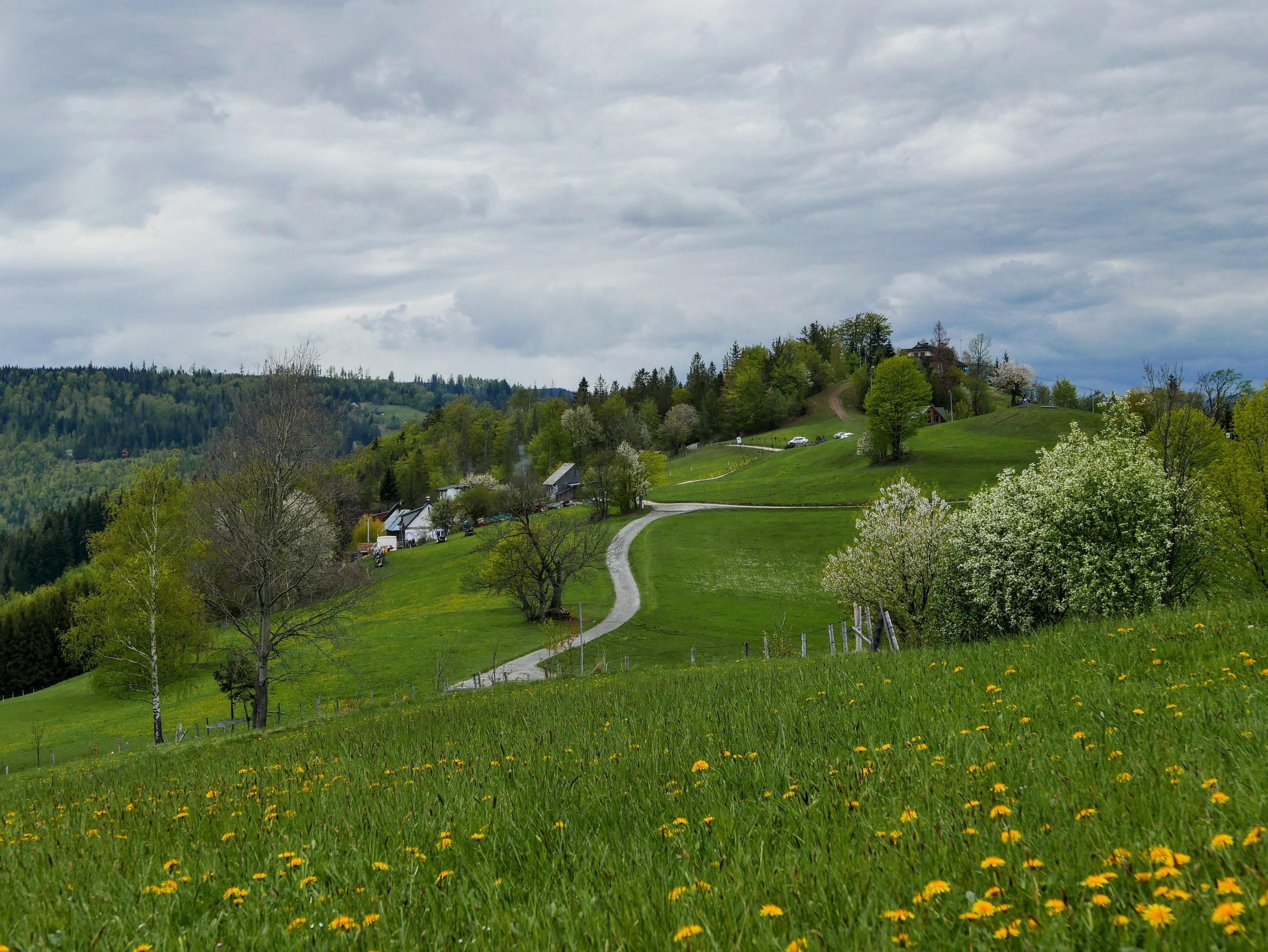 Beskid Śląski, Wisła: Cieńków szlak turystyczny