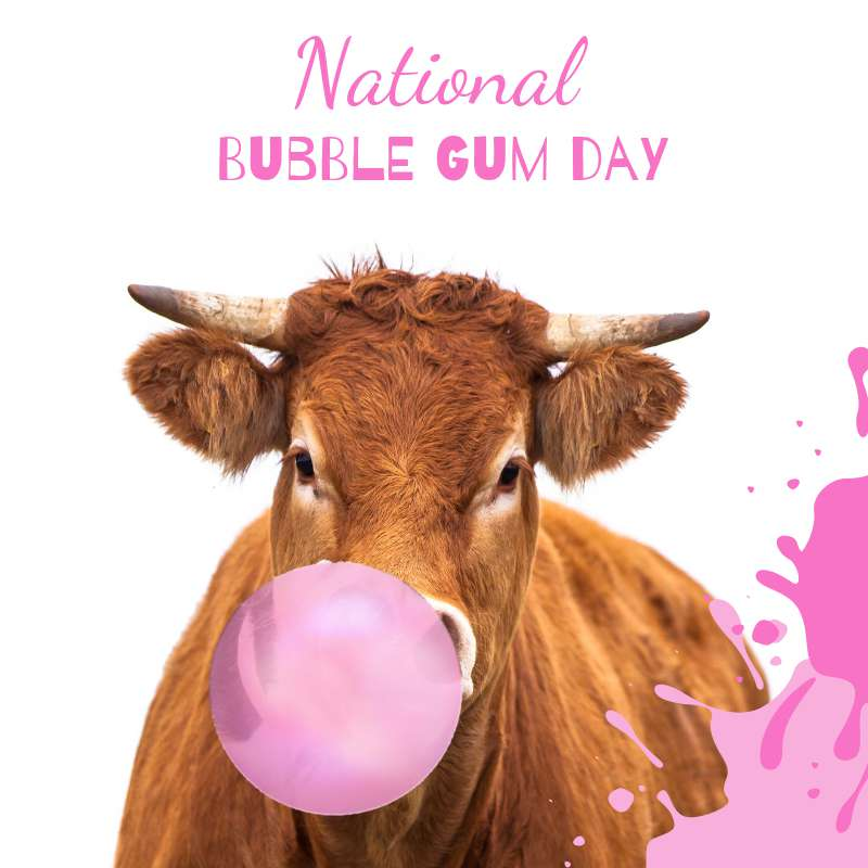 National Bubble Gum Day Wishes Pics