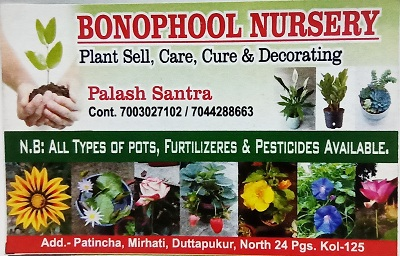 Plant Nursery by Palash Santra in Duttapukur