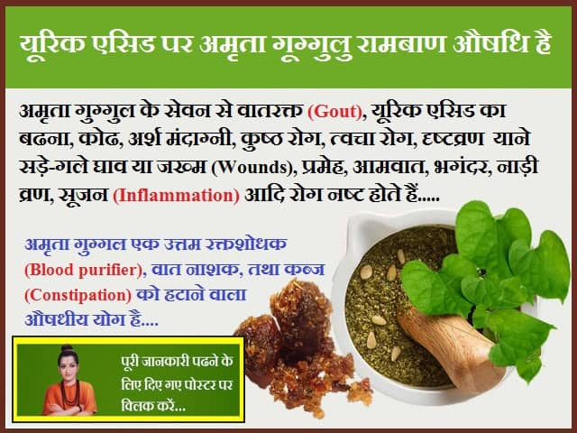 Amrita Guggulu is a Panacea on Uric Acid-यूरिक एसिड पर अमृता गूग्गुलु रामबाण औषधि है