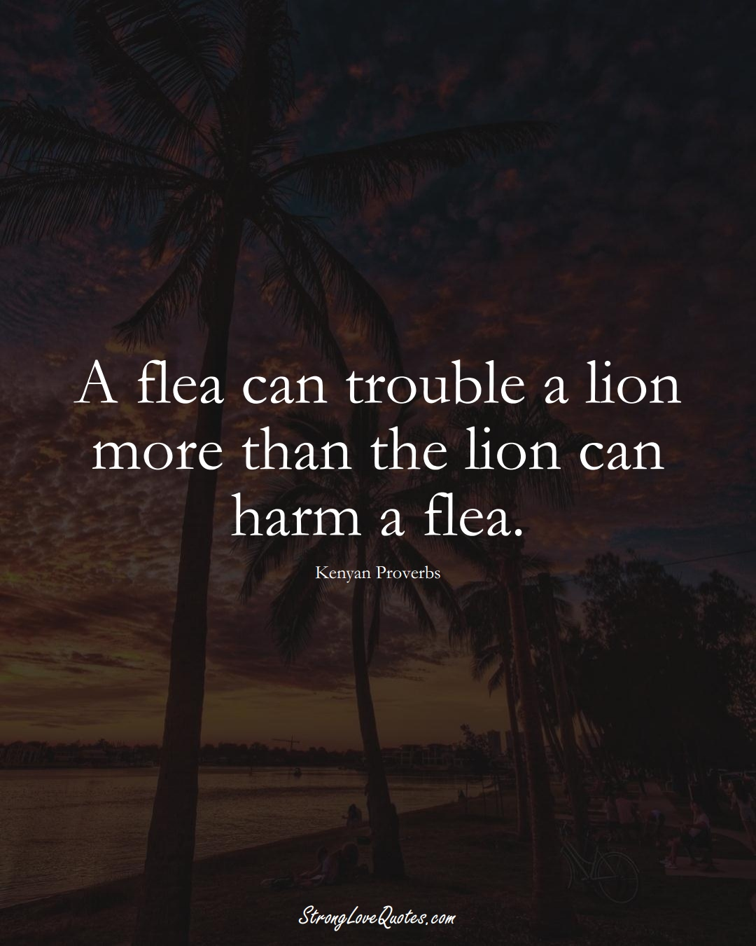 A flea can trouble a lion more than the lion can harm a flea. (Kenyan Sayings);  #AfricanSayings