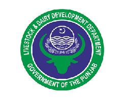 Latest Jobs in Livestock and Dairy Development Department 2021- Apply online PPSC Website