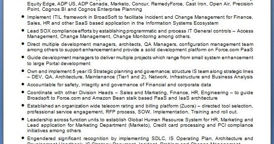 director information system sample resume format in word