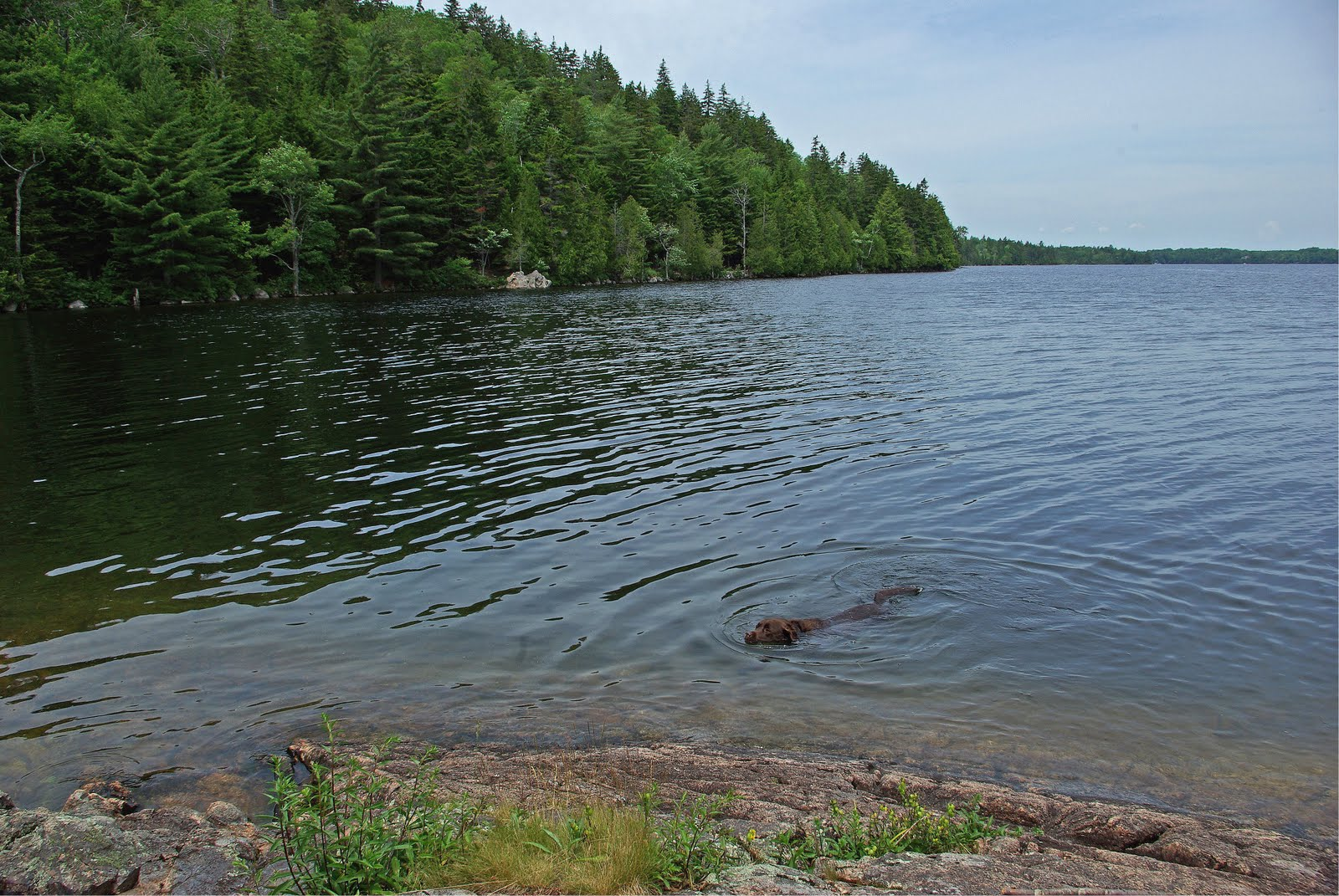 Singles in great pond maine