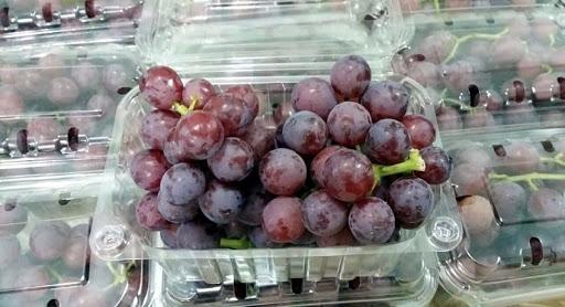 """Campagna dell'uva, l'allarme degli agricoltori: """"Dall'Olanda uva egiziana a metà prezzo"""""""