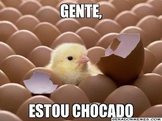 chocado #chocado meme brasil pt huehue brbr brasil zoeira zueira pintinho amarelo ovo chocado meme livro sway protagonistas