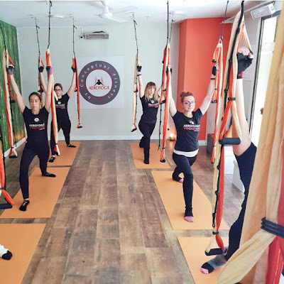 yoga aerien, aero yoga, aeroyoga, air yoga, fly, flying, gravity, stage, formation, formation professionnelle, stage, yoga alliance, remise en forme, sante