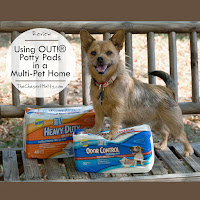 Using OUT!® Potty Pads in a Multi-Pet Home