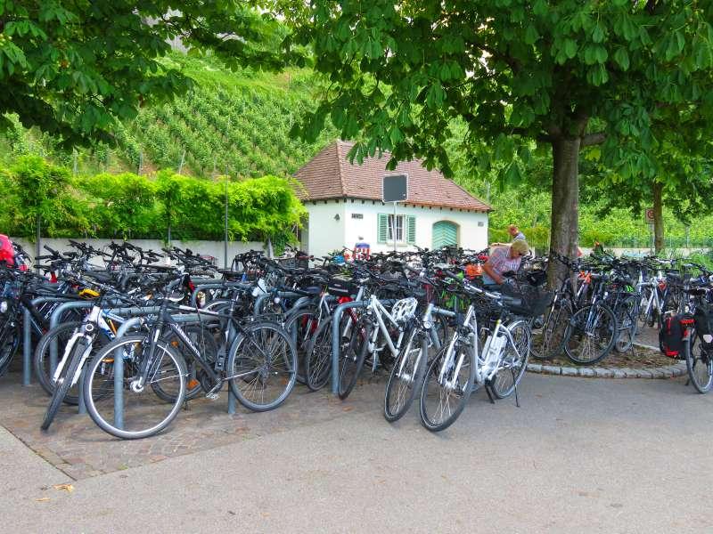 bikes Meersburg