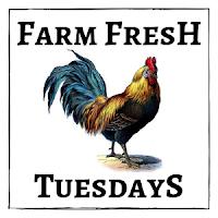 https://15acrehomestead.com/farm-fresh-tuesday-blog-hop-week-1/