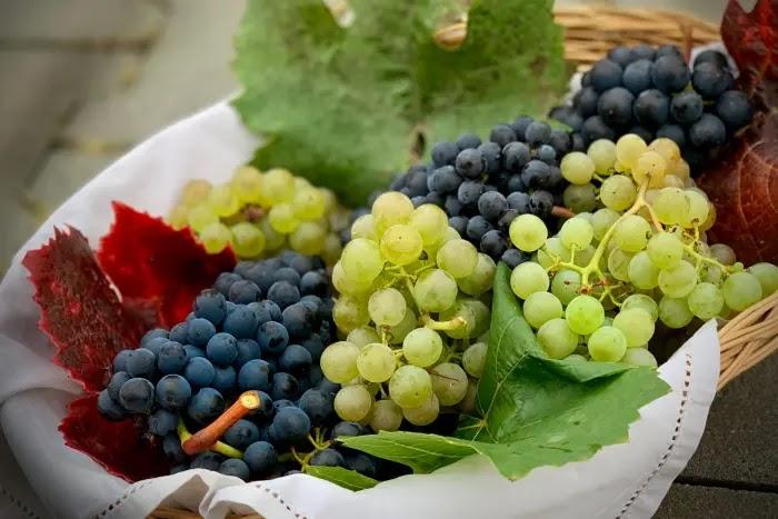 manfaat buah anggur untuk kesehatan dan kecantikan