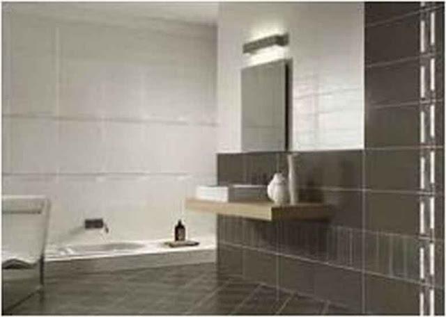 Tips Elegant Master Bathroom Ideas