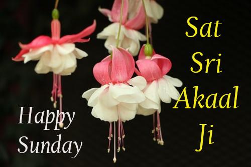 Sat Sri Akal Ji.