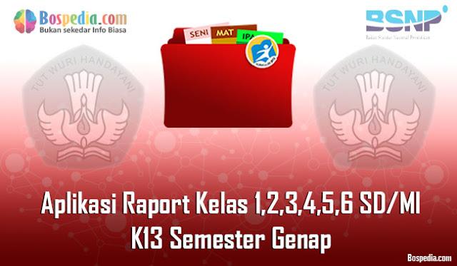 Aplikasi Raport Kelas 1,2,3,4,5,6 SD/MI K13 Semester Genap