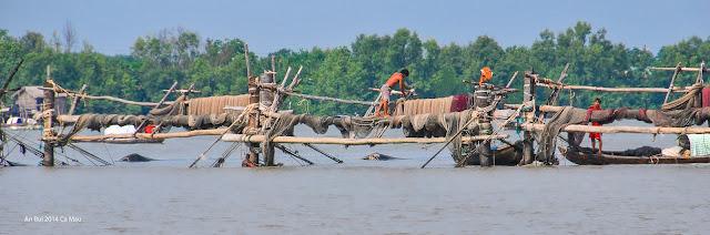 Fishing trap in Ca Mau