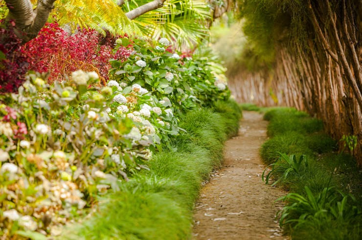 14. Madeira, Portugal - 29 Most Romantic Alleys to Hike