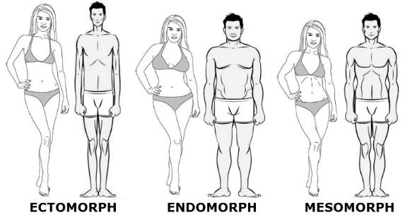 Τύποι σώματος