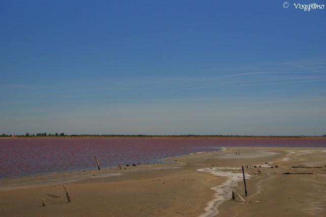 I colori delle vasche delle Saline di Aigues Mortes