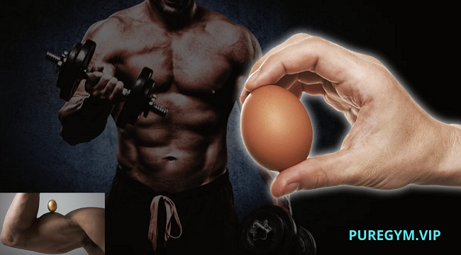 How To Eat Eggs to Build Muscle: Bodybuilding Diet