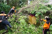 Wabup  Kasta Serahkan Bantuan Kepada Warga Yang Kena Musibah  Pohon Tumbang