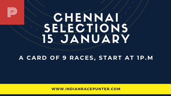 Chennai Race Selections 15 January, India Race Tips by indianracepunter,