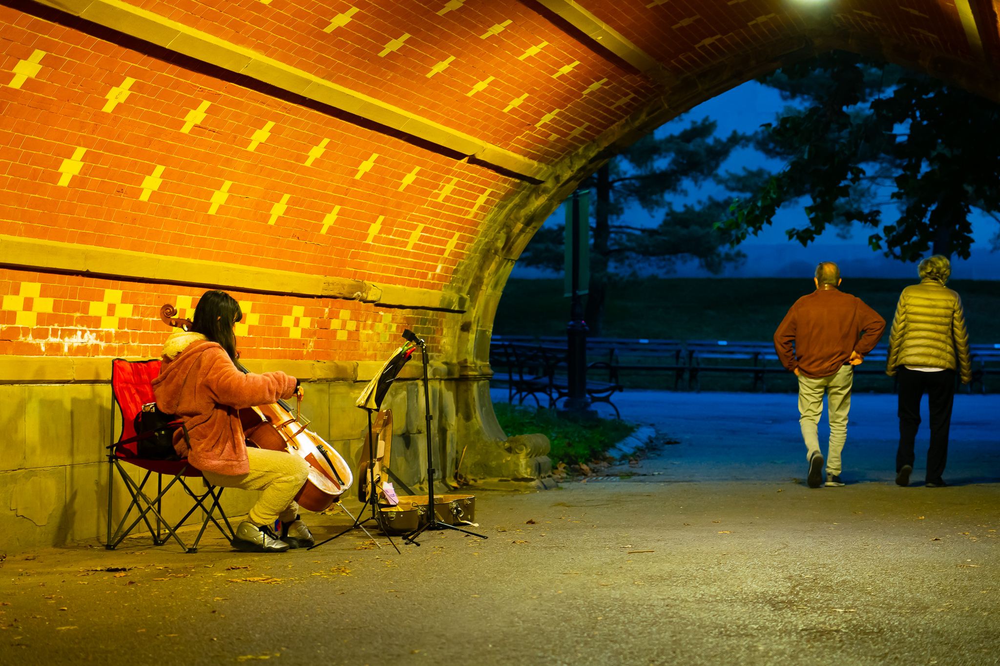 a photo of a cellist playing music in a tunnel in central park new york city