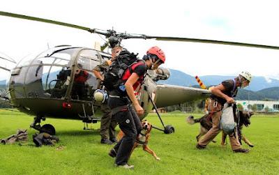 Austrian Pinscher as a mountain rescue dog