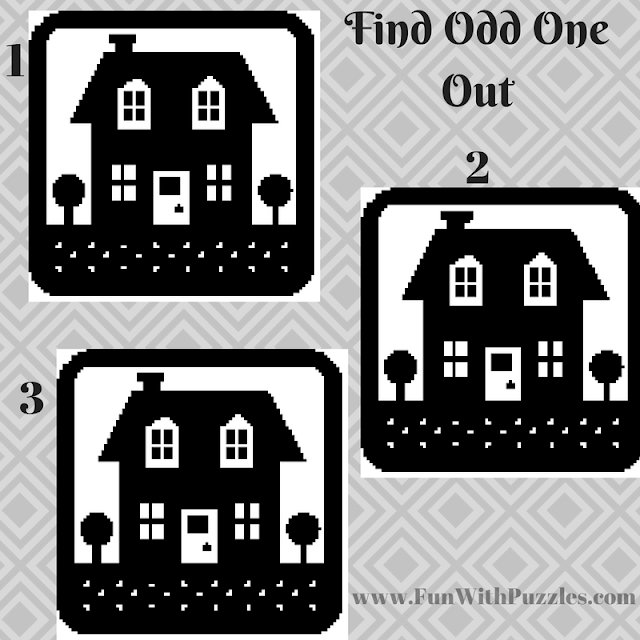 Odd One Out Hut Picture Puzzle-3