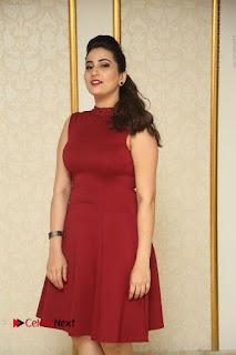 Telugu Tollywood Anchor Manjusha Pos in Red Short Dress  0007.JPG