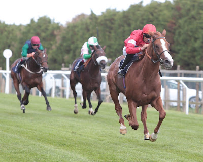 Ziggle Pops wins at Brighton for Richard Hannon