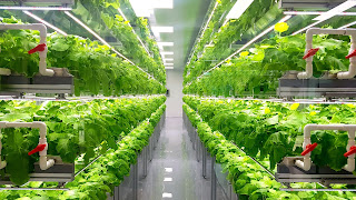 Indoor Farming Market Report: Size 2021, Share, and Growth Rate 2026 3
