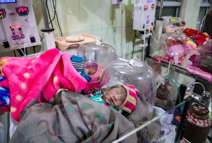 A  horrifying figure of newborn deaths has now been revealed in government hospitals in Gujarat