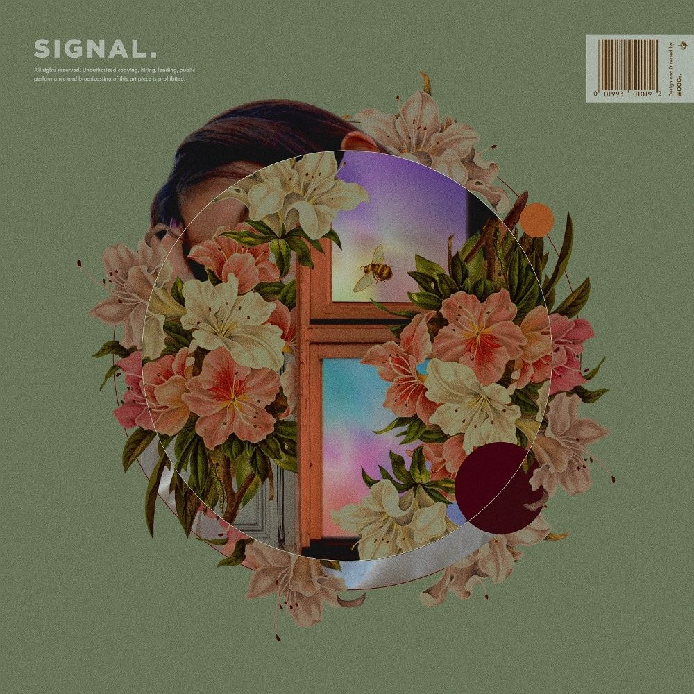 PUP – Signal – EP