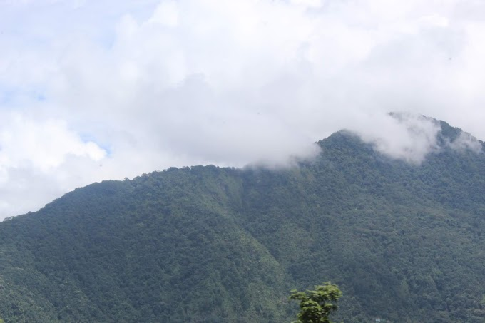 Nature at Darjeeling