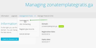 Name server domain